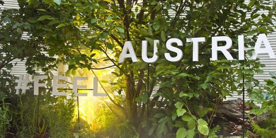 austria-turismo-bosco-culturale-interno-installazione